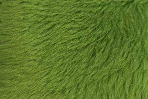 Verde grama 071